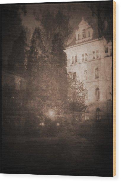 010 Wood Print by Laurentis Ure