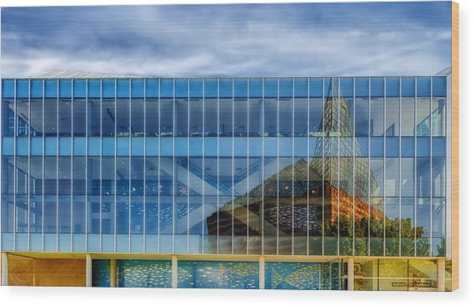 Aquarium Reflection - Chattanooga Wood Print