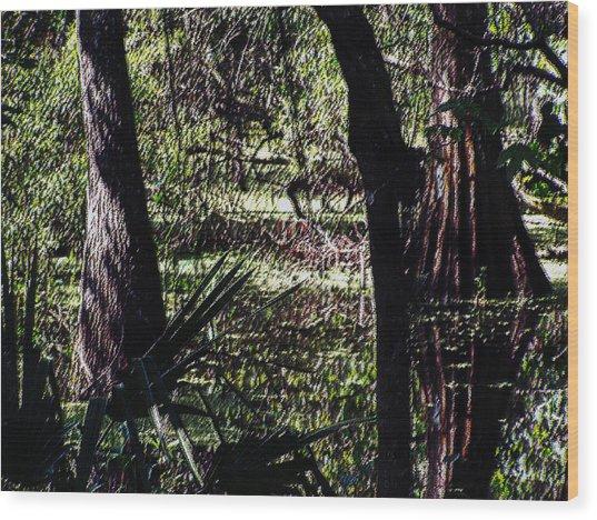03032015 Southern Marsh Digital Pastel Wood Print