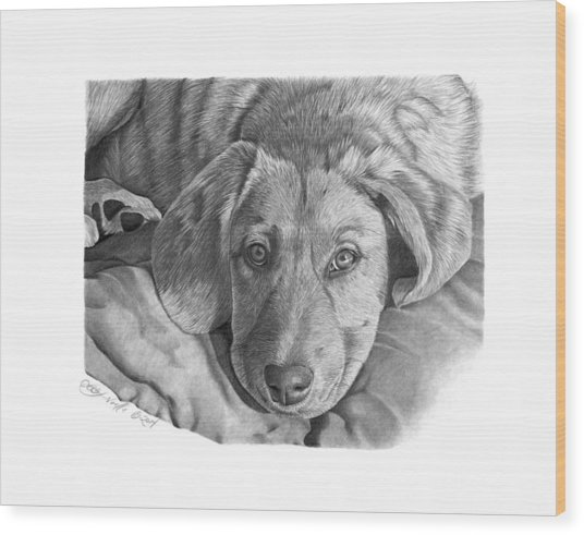 033 - Molly Wood Print