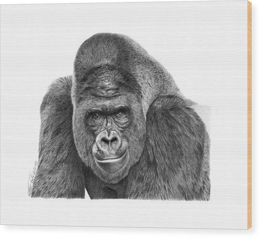 042 - Gomer The Silverback Gorilla Wood Print