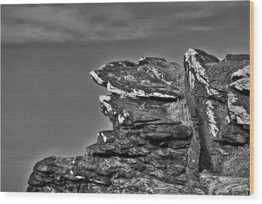 0630 Wood Print by Carlos Mac