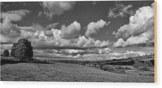 Culm Valley In Devon Wood Print