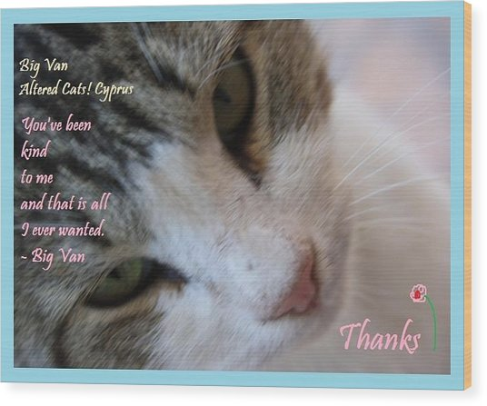 A Big Van Thanks Altered Cats Cyprus Wood Print