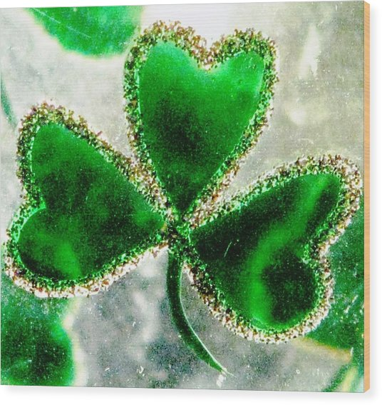 A Shamrock On Ice Wood Print