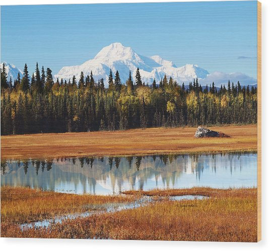 Alaska Denali Autumn In Petersville Wood Print