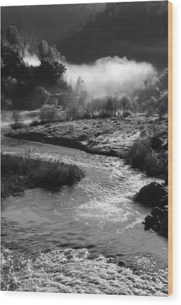 American River Confluence Wood Print