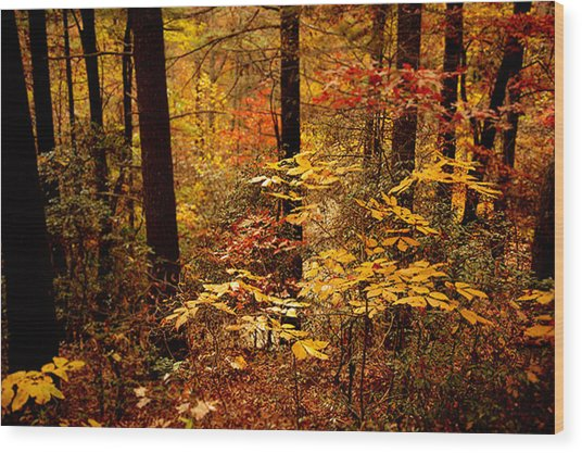 Appalachian Fall Wood Print