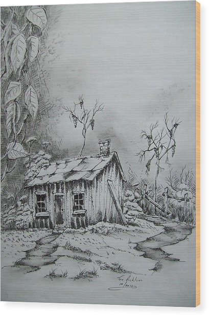 Appalachian Old Shed Wood Print by Tom Rechsteiner