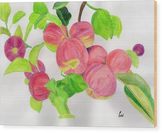 Apples Wood Print by Bav Patel