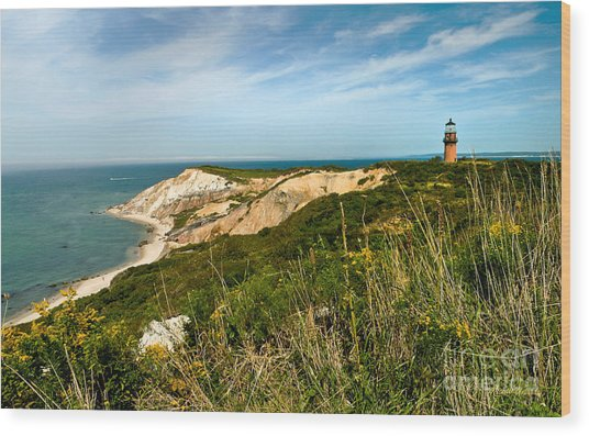 Aquinnah Gay Head Lighthouse Marthas Vineyard Massachusetts Wood Print