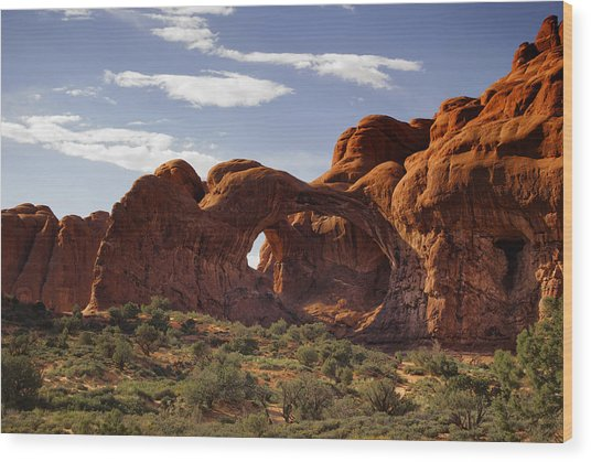 Arches National Park Wood Print