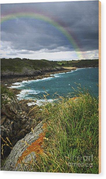 Atlantic Coast In Brittany Wood Print