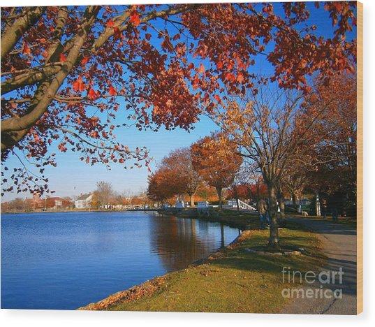 Autumn At Argyle Park Wood Print