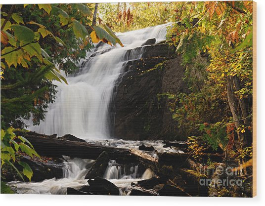 Autumn At Cattyman Falls Wood Print
