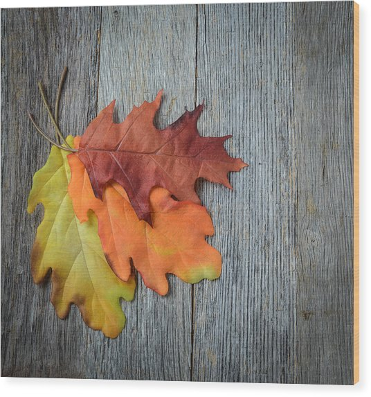 Autumn Leaves On Rustic Wooden Background Wood Print