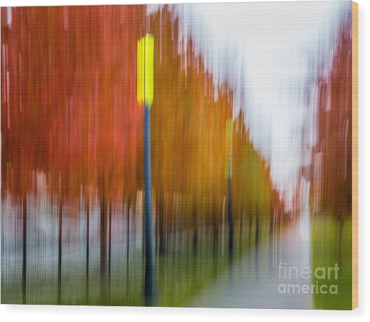 Autumn Park 1 Wood Print