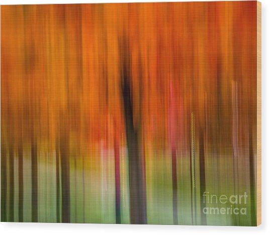 Autumn Park 2 Wood Print