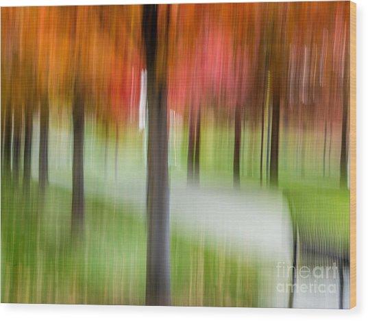 Autumn Park 3 Wood Print