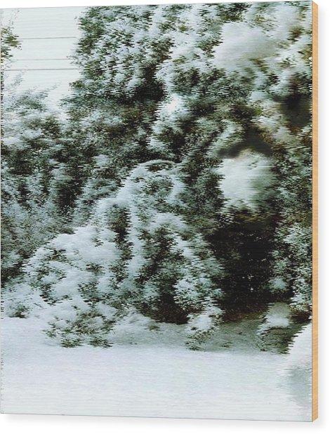 Backyard Snow Wood Print by Elaine Williams