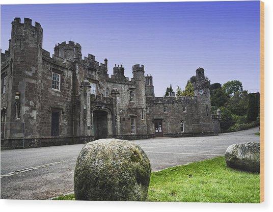 Balloch Castle Wood Print