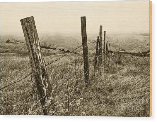 Bay Hill Road Wood Print