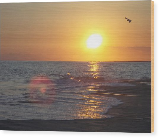 Beach #6 Wood Print