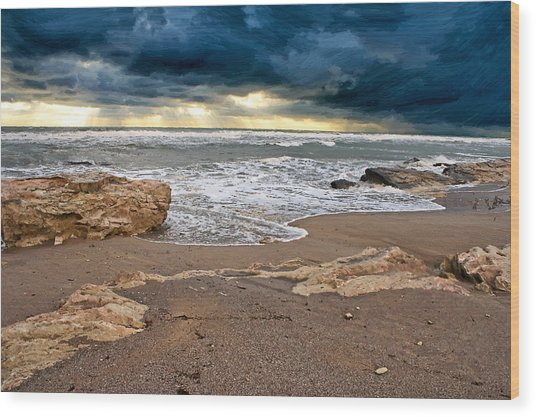 Beach. Wood Print by Alexandr  Malyshev