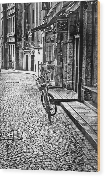 Bicycle And Sparrow 2  Wood Print