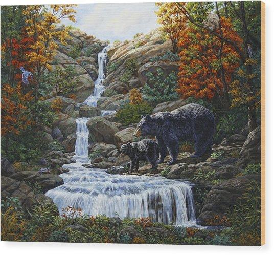 Black Bear Falls Wood Print