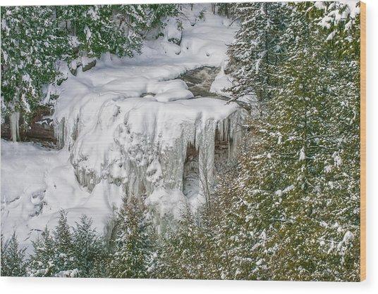 Blackwater Falls Wood Print