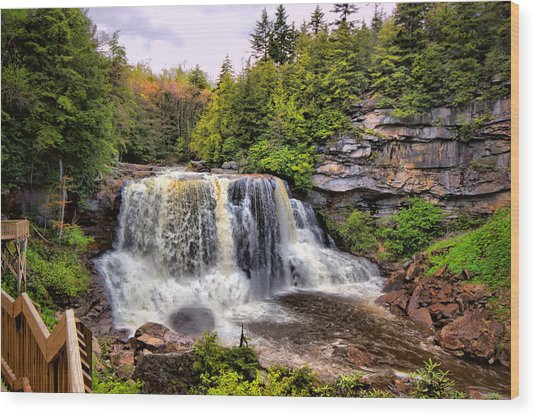 Blackwater Falls Sp Wood Print