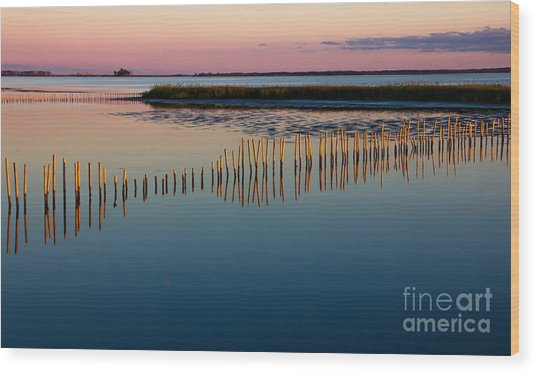 Blackwater Sunset Wood Print