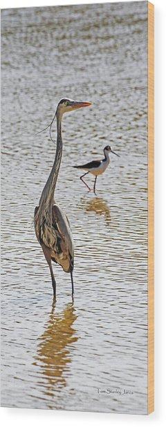 Blue Heron And Stilt Wood Print