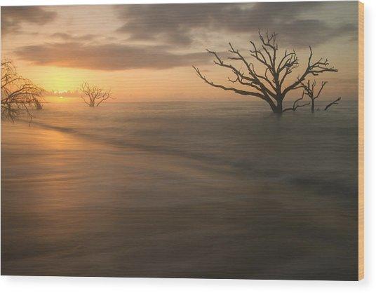Botany Bay Beach Wood Print