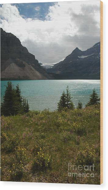 1010a Bow Lake Alberta Wood Print