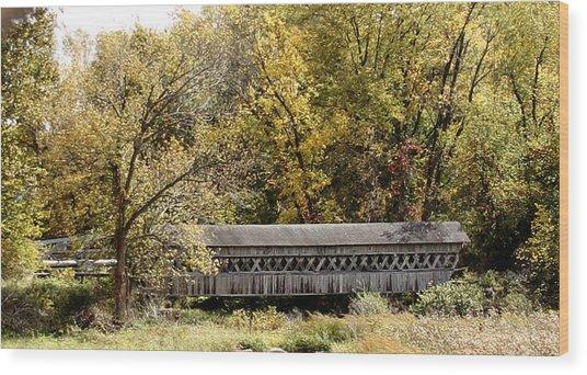 Buckeye Lake Ohio Wood Print