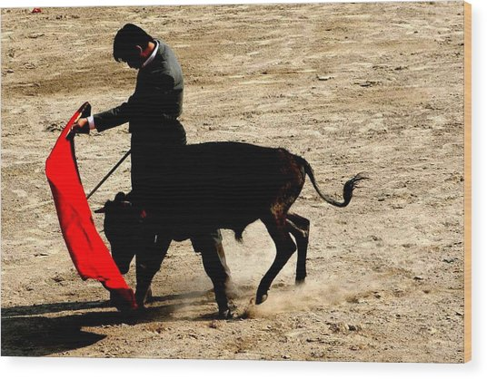 Bullfighter In Training Wood Print