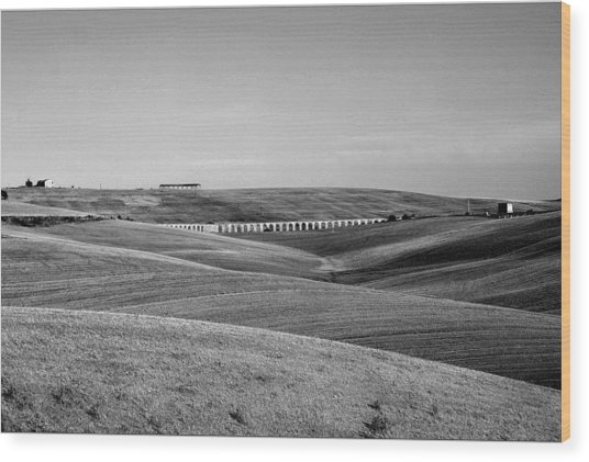 Tarquinia Landscape Campaign With Aqueduct And Houses Wood Print