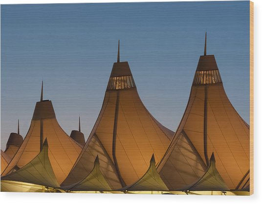 Canopies At Dusk Wood Print by Brian  Weiss