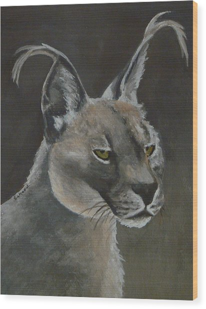 Caracal Cat Wood Print