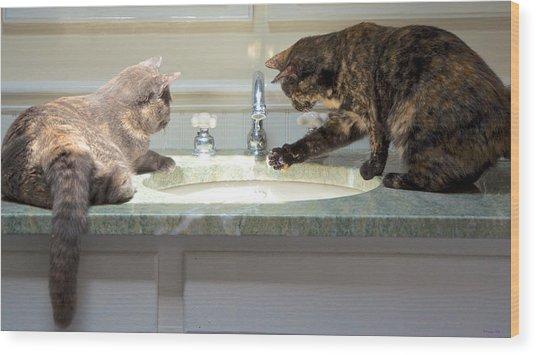Cat Curiosity Wood Print