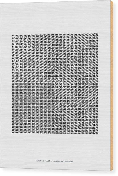 Catalogue Of 4096 Hilbertonians Wood Print