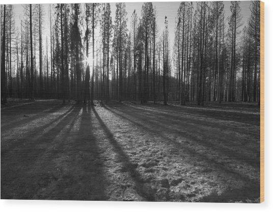 Charred Silence - Yosemite Rim Fire 2013 Wood Print