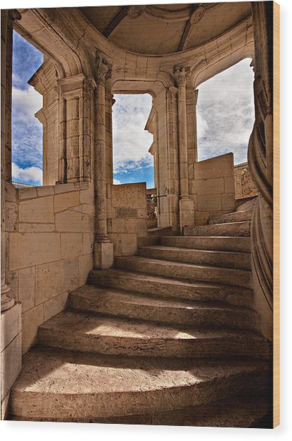 Wood Print featuring the photograph Chateau De Blois Staircase / Loire Valley by Barry O Carroll