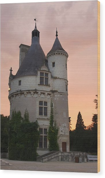 Chenonceau Castle Wood Print by Ioan Panaite