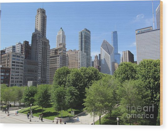 Chicago In Summer Wood Print by Michael Paskvan