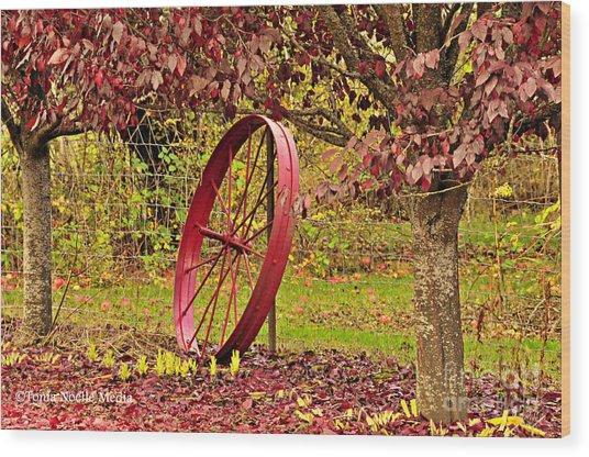 Circle Of Life Wood Print