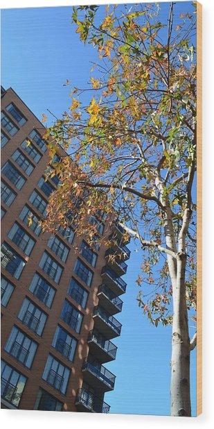 City Life Wood Print