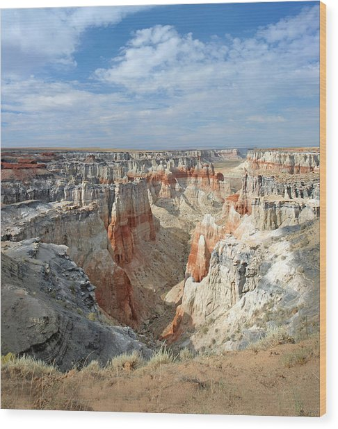 Coal Mine Mesa 14 Wood Print